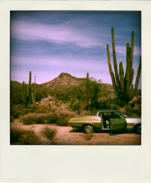 Ford Gran Torino in Baja California